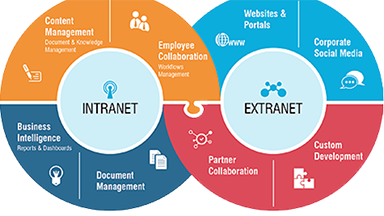 business intranet and extranet development
